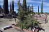 Alpine Cemetery (2770)