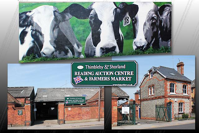 Auction Centre & Farmers' Market - Reading - 20.4.2015