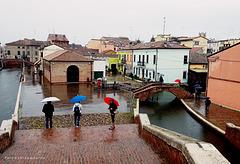 Umbrella Day in COMACCHIO - Italia
