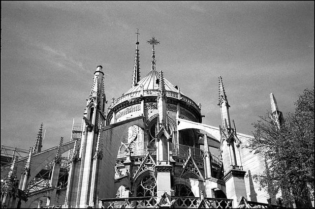 Flying buttresses, Notre Dame du Paris.