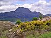 Slioch (The Spear Hill) 981 m