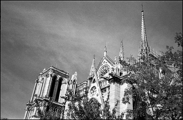 Pinnacles, Notre-Dame, Paris.