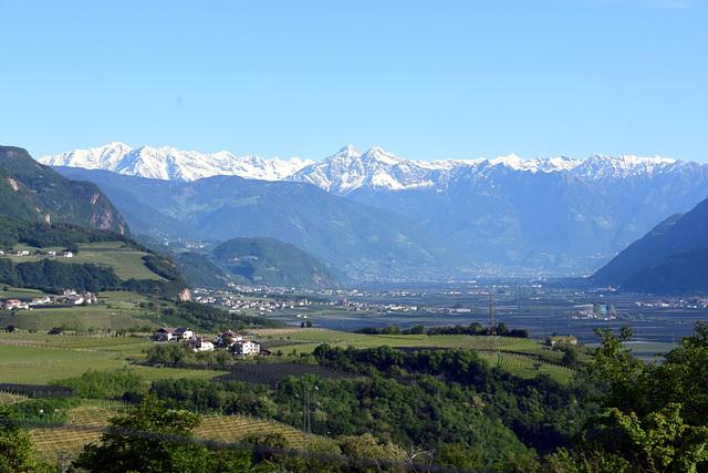 Blick  über das Etschtal nach Meran und Ötztaler Alpen