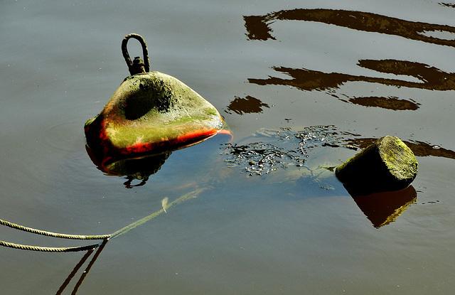 Dysfunctional Buoy 2