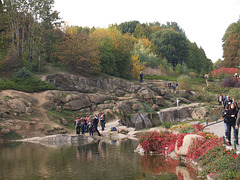 В Софиевском парке / In the Park of Sofievka