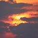 Sunset 08-06-21