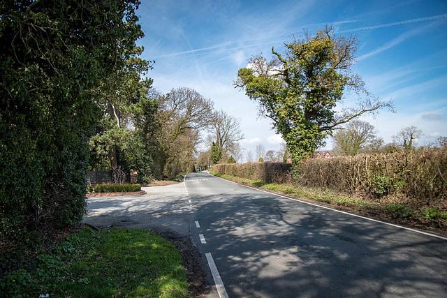 Badgers Rake Lane2