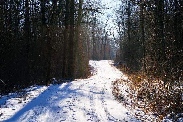Ein Winter, wie er einmal war - A winter as it used to be