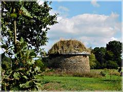 le colombier de Saint-Méleuc  (22)(XVIIème siècle). Ce colombier compte environ 450 boulins ;