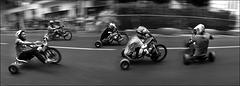Course de tricycles [Saintes - Août 2015]
