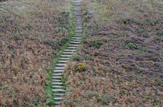 Escalier dans la lande