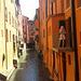 Bologna...Il vecchio canale delle Moline..l'unico che non è stato coperto con il cemento!