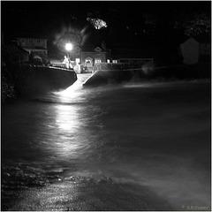 'harbour lights'