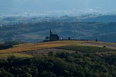 Notre Dame de l'Immaculée conception - Saint Laurent d'Oingt