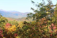 an Overlook just outside Gatlinburg, Tennessee~~~ USA