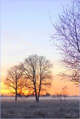Gorgeous Morning...