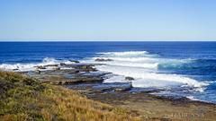 Coastal walk #5