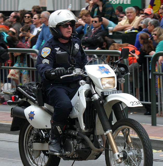 San Francisco Pride Parade 2015 (5699)