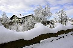 H.F.F. from St. Johann in Tyrol