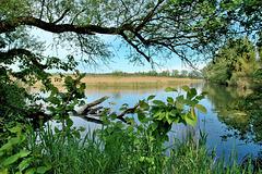 La réserve naturelle du Fanel...