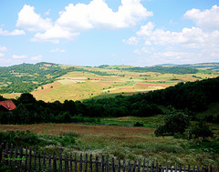 YIN-YANG landscape