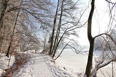 Spaziergang um den Rösslerweiher...