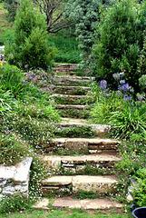 Steps in heaven!