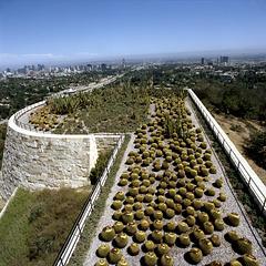 Cactus Enclosure