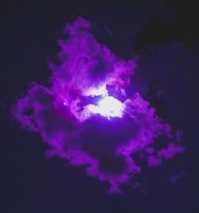 Purple rain de lumière...