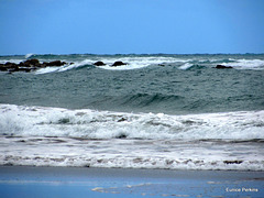 Waves and Surf.