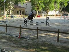 Cité du cheval