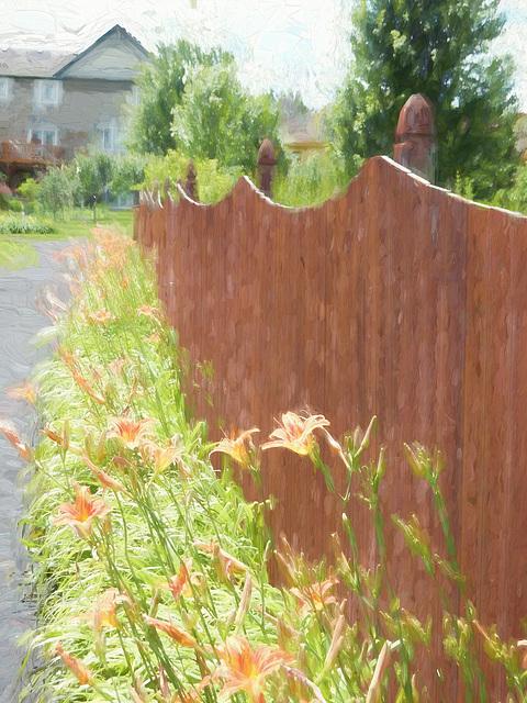 summer friday fence