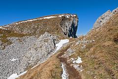 Der Weg zum Gipfel - The Way to the Summit (PiP)