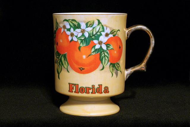 Florida Coffee Cup