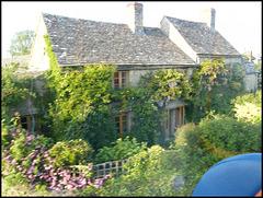 passing cottage garden