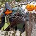 Burton pumpkin fiesta5