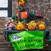 Burton pumpkin fiesta7