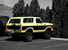 Ford Bronco, 1978-79 (?)
