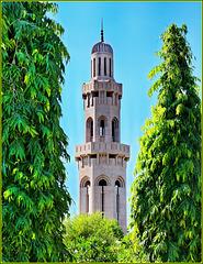 Mascate : Il minareto della Moskea Sultan Qaboos