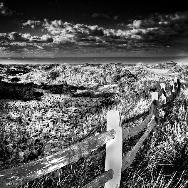 fence to the sea