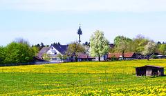 Mai in Winzenweiler