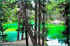 Il lago Verde in Vallestretta - (656)