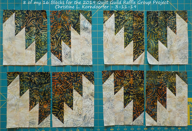 8 of my 16 Blocks for 2019 Quilt Guild Raffle Quilt Group Project - 3-11-19 -pic2