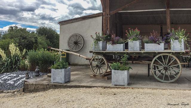 Blumenschmuck auf dem Rossberghof in Wichingen