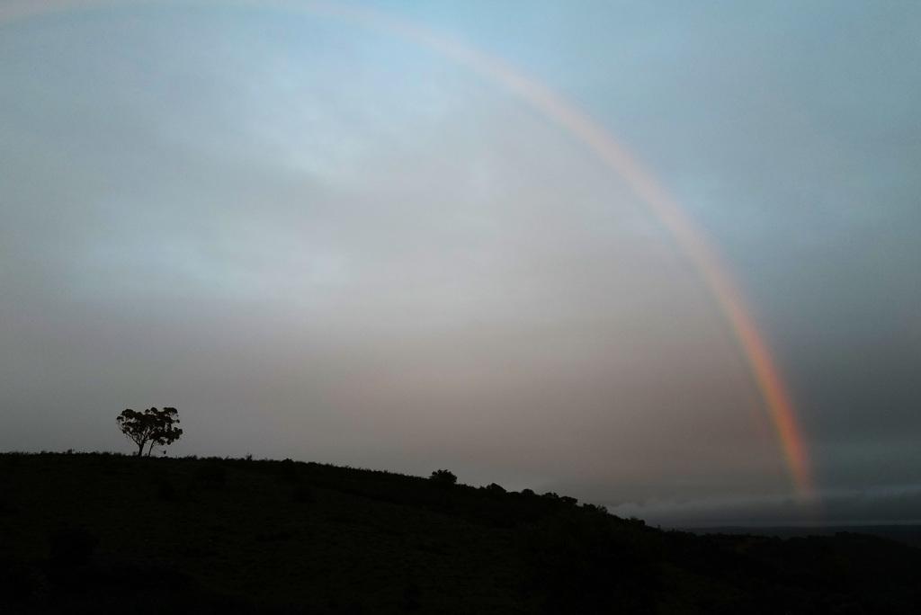 Penedos, Rainbow L1000408