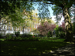 Queen Square shade