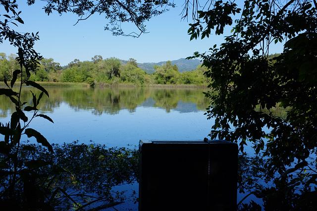 Pinhole at Spring Lake