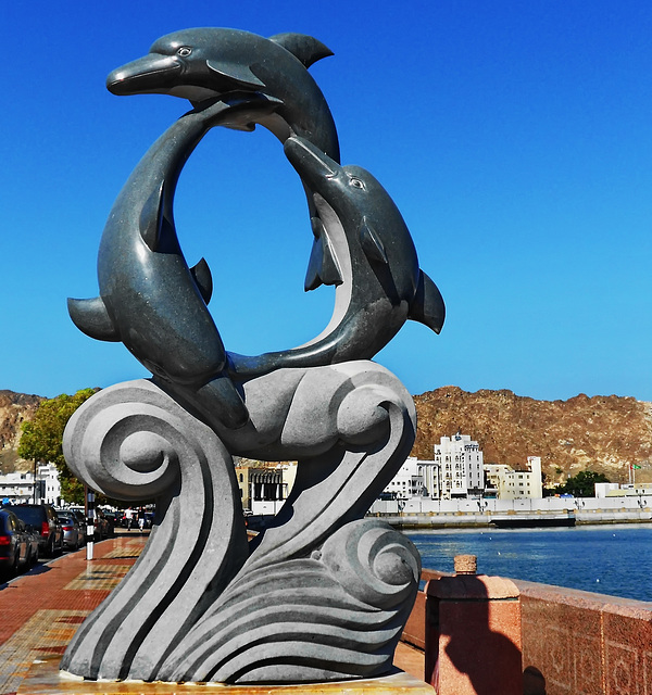 Dolphins Oman (411)