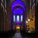Mystisches Licht  -  Mystical light