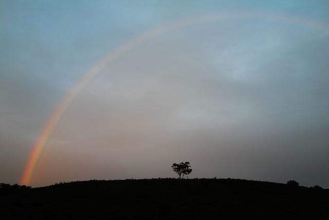 Penedos, Rainbow